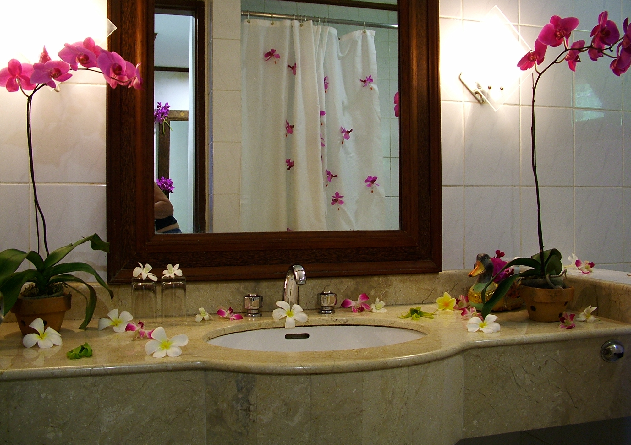 Bathroom Decoration Ideas: Easy Bathroom Decorating Ideas